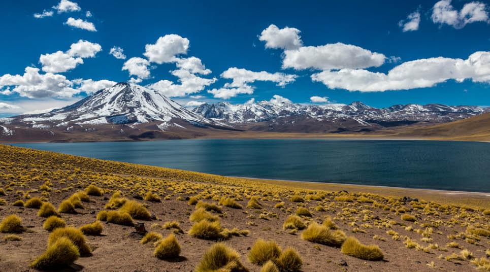 Lagunas Altiplânicas Miscanti e Meñiques