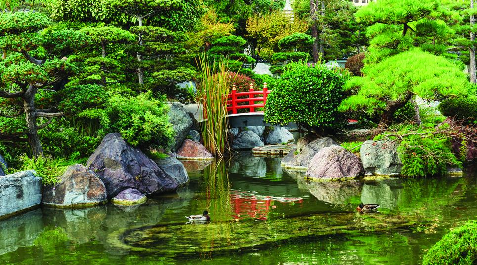 le-jardin-japonais