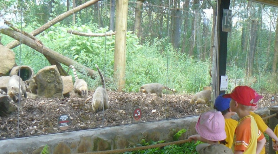 Gramado Zoo (Foto: divulgação)