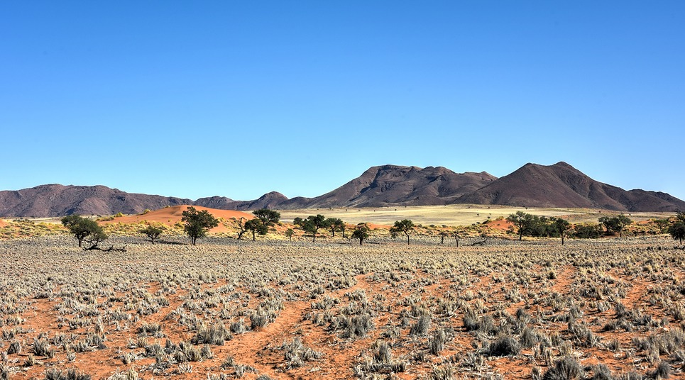 NamibRand (Foto: shutterstock.com)