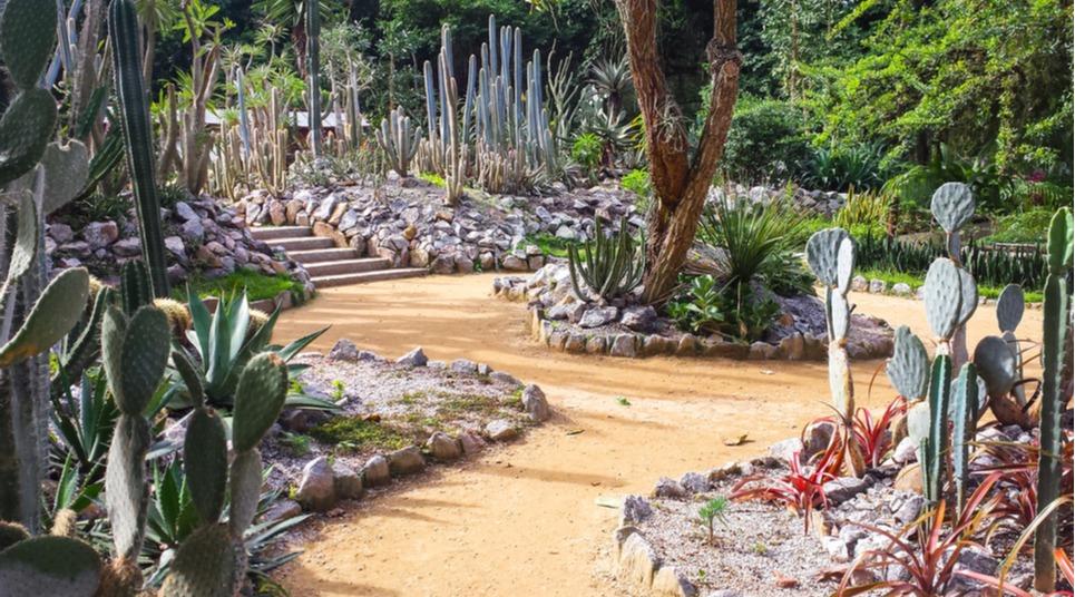 Jardim Botânico do Rio