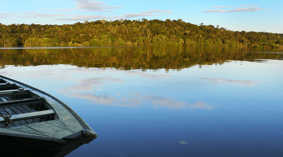 Patrimônio da Unesco, o Parque Nacional do Jaú (AM), preserva florestas tropicais úmidas (foto: divulgação)