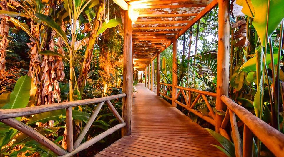 O Itamambuca Eco Resort é rodeado pela Mata Atlântica