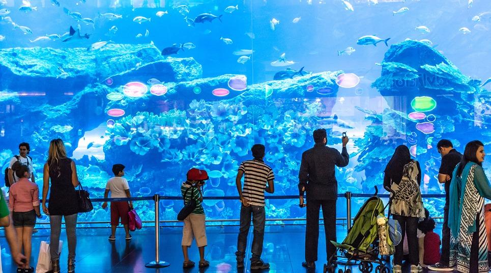 Aquário do Dubai Mall