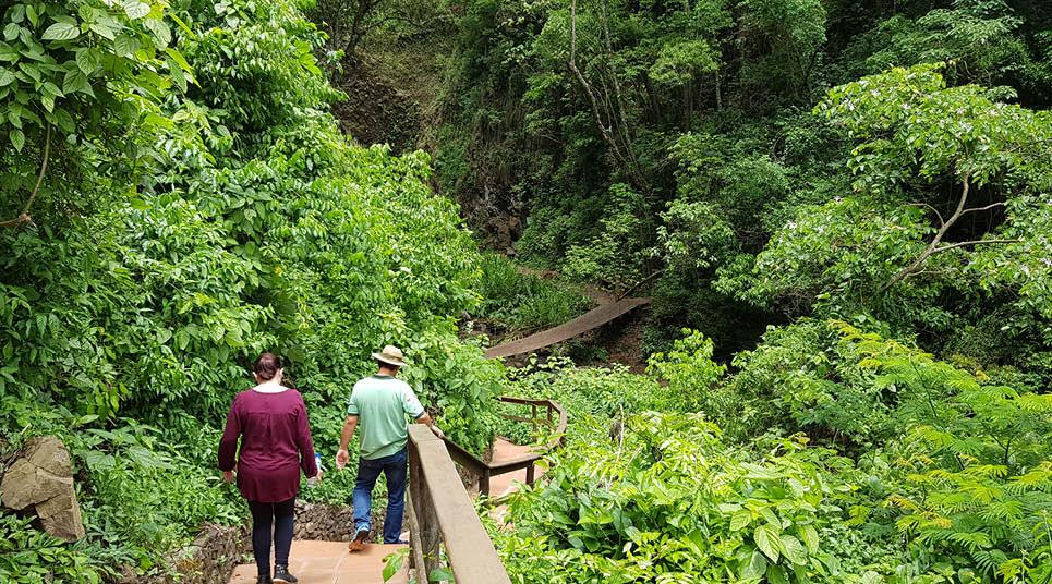 Trilha para a Cachoeira dos Quatis
