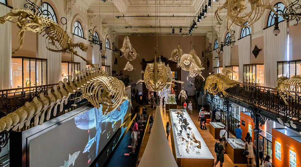 Museu Oceanográfico de Mônaco