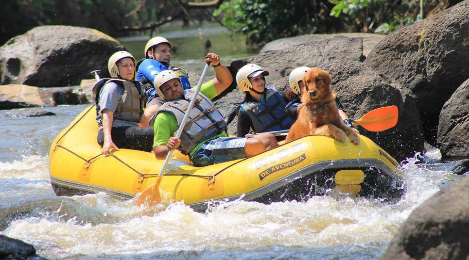 Rafting com cachorro