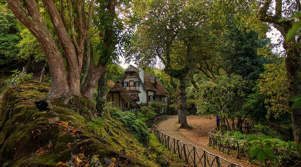 Parque Florestal de Queimadas