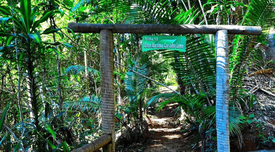 Fazer trilha é o programa ideal para conferir de perto as belezas naturais (foto: Fernando Madeira)